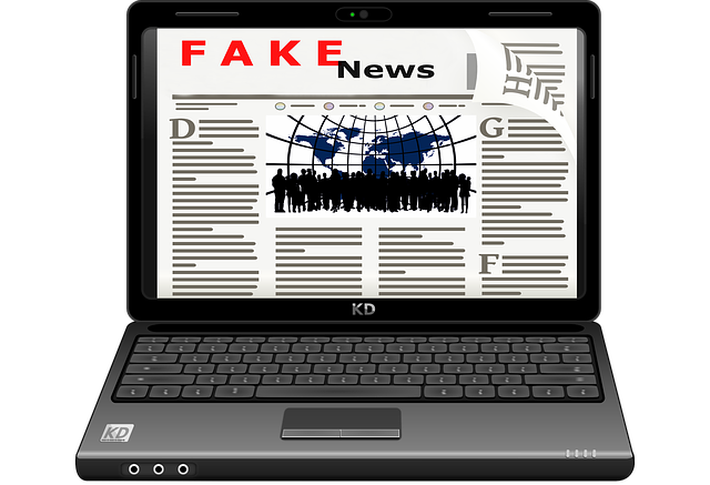 Fake-News im Internet